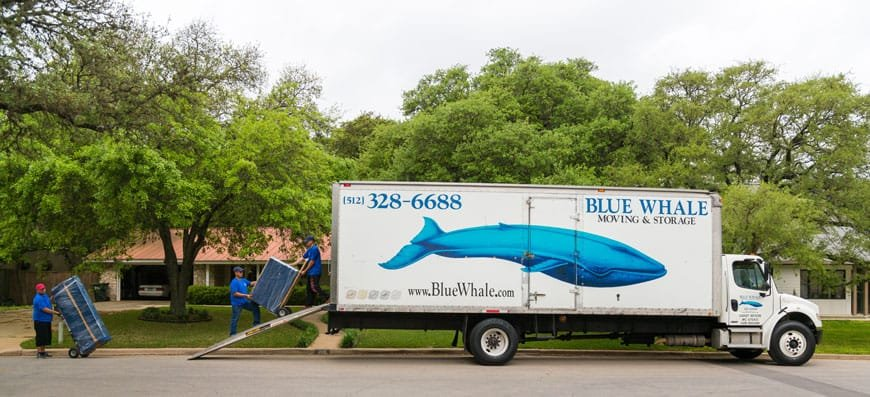 Blue Whale Moving & Storage Loading Truck in Austin