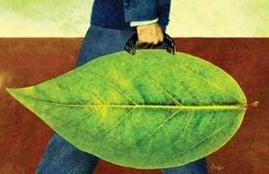 Leaf Suitcase